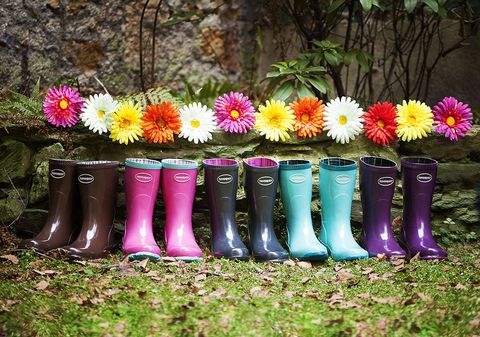 Petal, Purple, Flower, Boot, Pink, Magenta, Rain boot, Violet, Lavender, Leather,