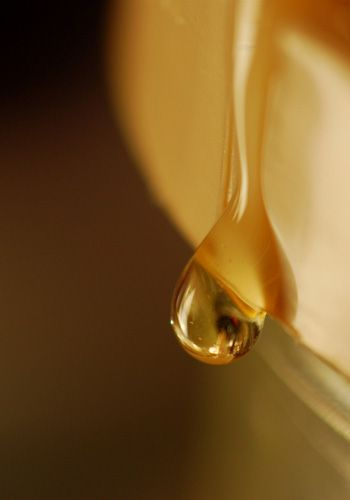 Liquid, Yellow, Fluid, Amber, Oil, Close-up, Macro photography, Kitchen utensil,