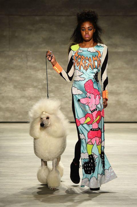Style, Dress, Dog, Dog breed, Carnivore, Street fashion, Jewellery, Fashion model, One-piece garment, Day dress,
