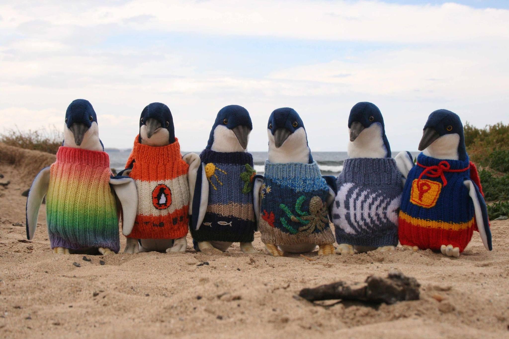 Bien-aimé Nuove frontiere dell'ecofashion: il maglione che salva i pinguini YA23