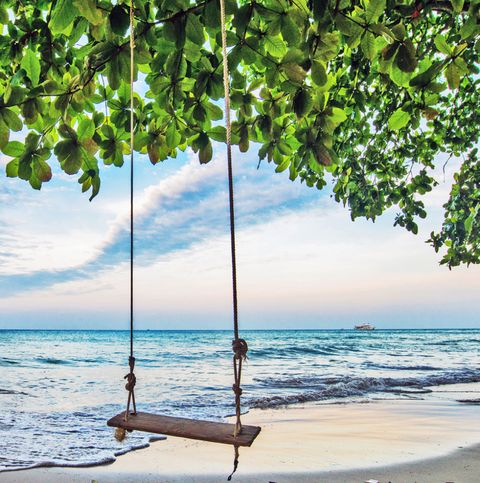 Rope swing on a tropical beach