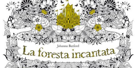 """cover del libro """"La foresta incantata"""""""
