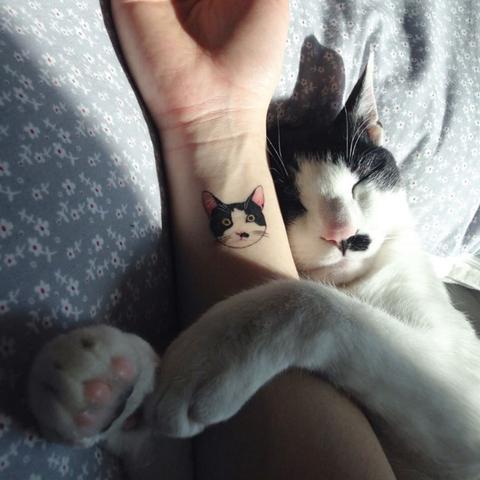 tattoo gatto tatuaggio 2