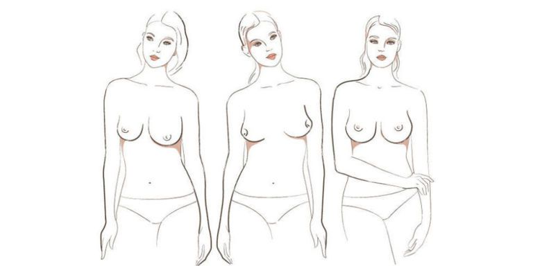 Al mondo esistono 7 tipi di seno diverso, o almeno così pare