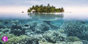 un'immagine del mare delle Maldive dove trascorrere le vancanze