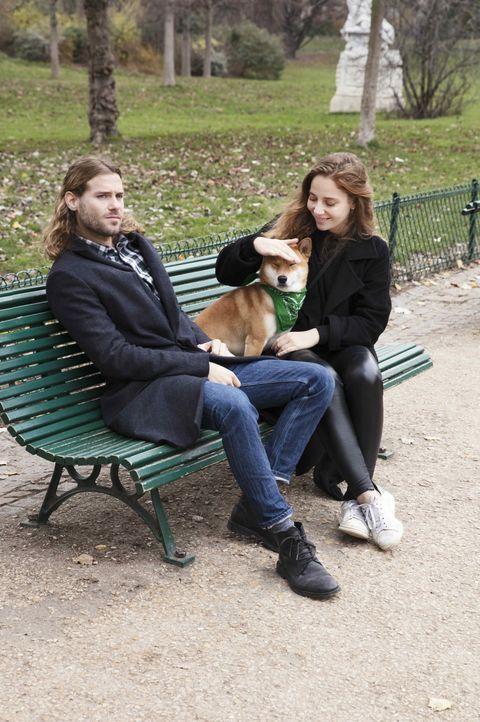 Leg, Dog breed, Sitting, Jeans, Carnivore, Dog, Mammal, Denim, People in nature, Outdoor furniture,