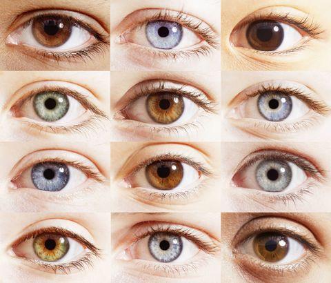 実は「目の色」は誰でも同じ!?そ...