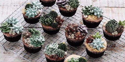 リアルで可愛い「多肉植物ケーキ」が新トレンド?