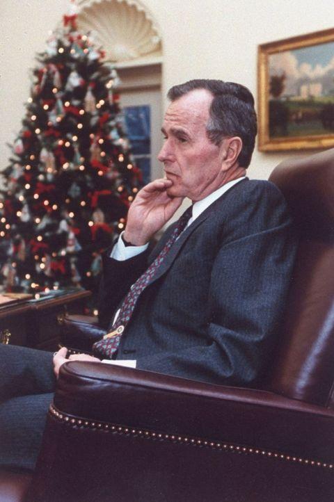 "<p>この年、ブッシュ大統領は大統領の執務室であるオーバルオフィスにもクリスマスツリーを設置。<span class=""redactor-invisible-space""></span></p>"