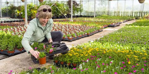 Image Getty Images At The Nursery