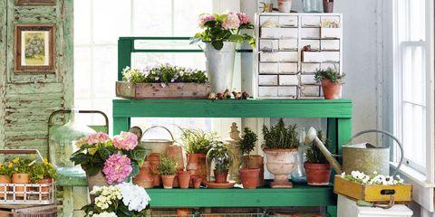 Green, Interior design, Room, Ceiling, Wall, Interior design, Fixture, Flowerpot, Home, Flower Arranging,
