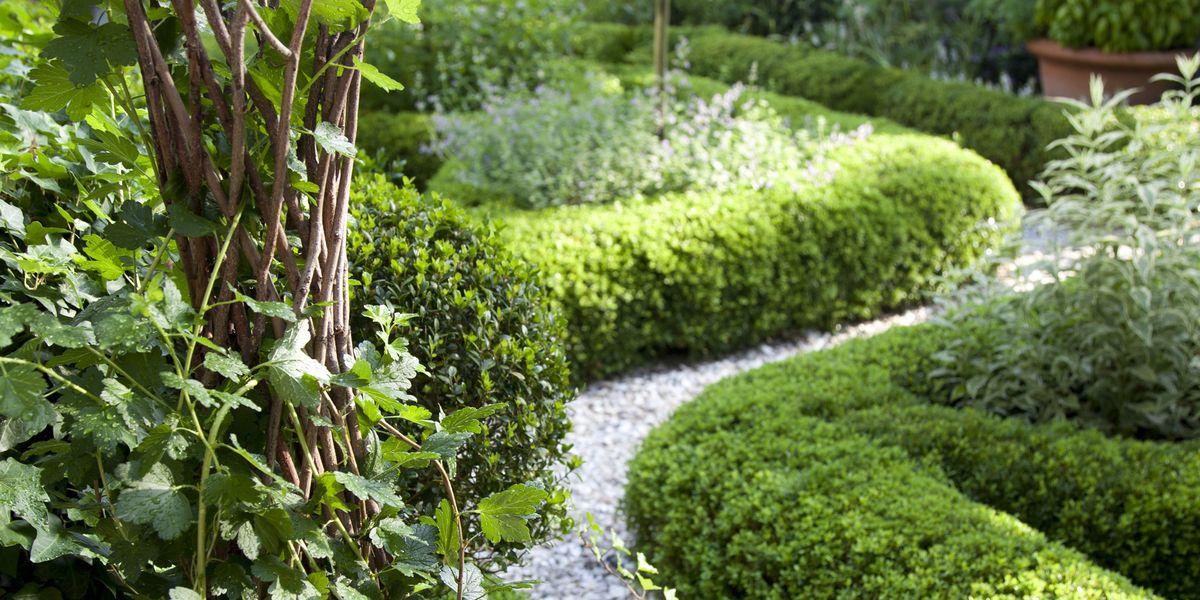 Charlotte Moss Garden Design Ideas - Flower Garden Ideas