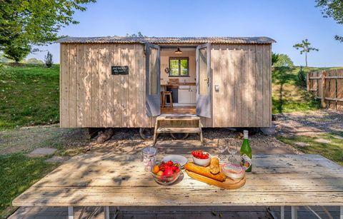 Wood, Table, Land lot, Outdoor furniture, Drink, Outdoor table, Rural area, Door, Shack, Bottle,