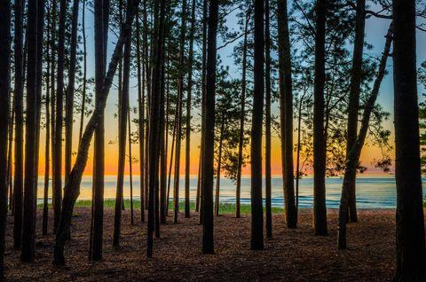 Nature, Sky, Natural environment, Natural landscape, Sunset, Landscape, Sunrise, Evening, Amber, Sunlight,