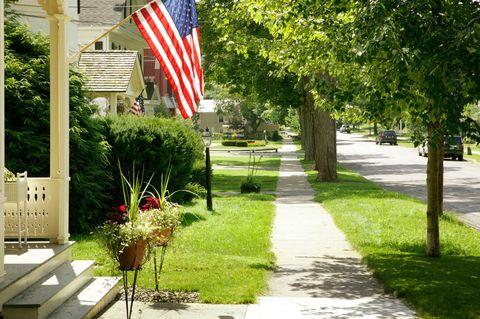 Flag, Flag of the united states, Woody plant, Pole, Garden, Flag Day (USA), Walkway, Sidewalk, Shade, Flowerpot,