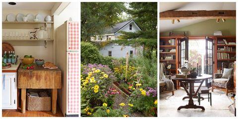 Plant, Wood, Room, Property, House, Home, Real estate, Flower, Building, Interior design,
