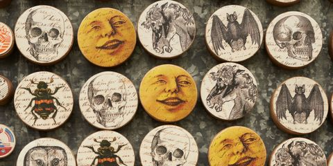 Chin, Collection, World, Circle, History, Artifact, Skull, Bone, Souvenir,