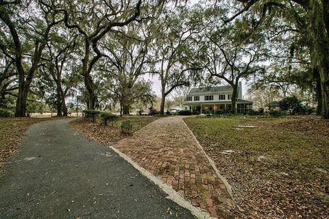 Road surface, Leaf, Tree, Asphalt, House, Land lot, Woody plant, Real estate, Residential area, Soil,