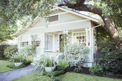 Plant, Window, House, Property, Residential area, Home, Real estate, Tree, Garden, Building,