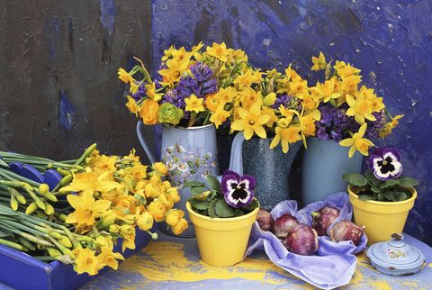 Flowerpot, Yellow, Flower, Serveware, Petal, Purple, Majorelle blue, Bouquet, Interior design, Floristry,