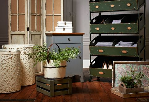 Wood, Plant, Flowerpot, Interior design, Hardwood, Cabinetry, Interior design, Wood stain, Houseplant, Plywood,