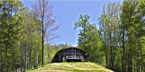 Nature, Vegetation, Natural landscape, Infrastructure, Tree, Photograph, Landscape, Nature reserve, Rural area, Biome,