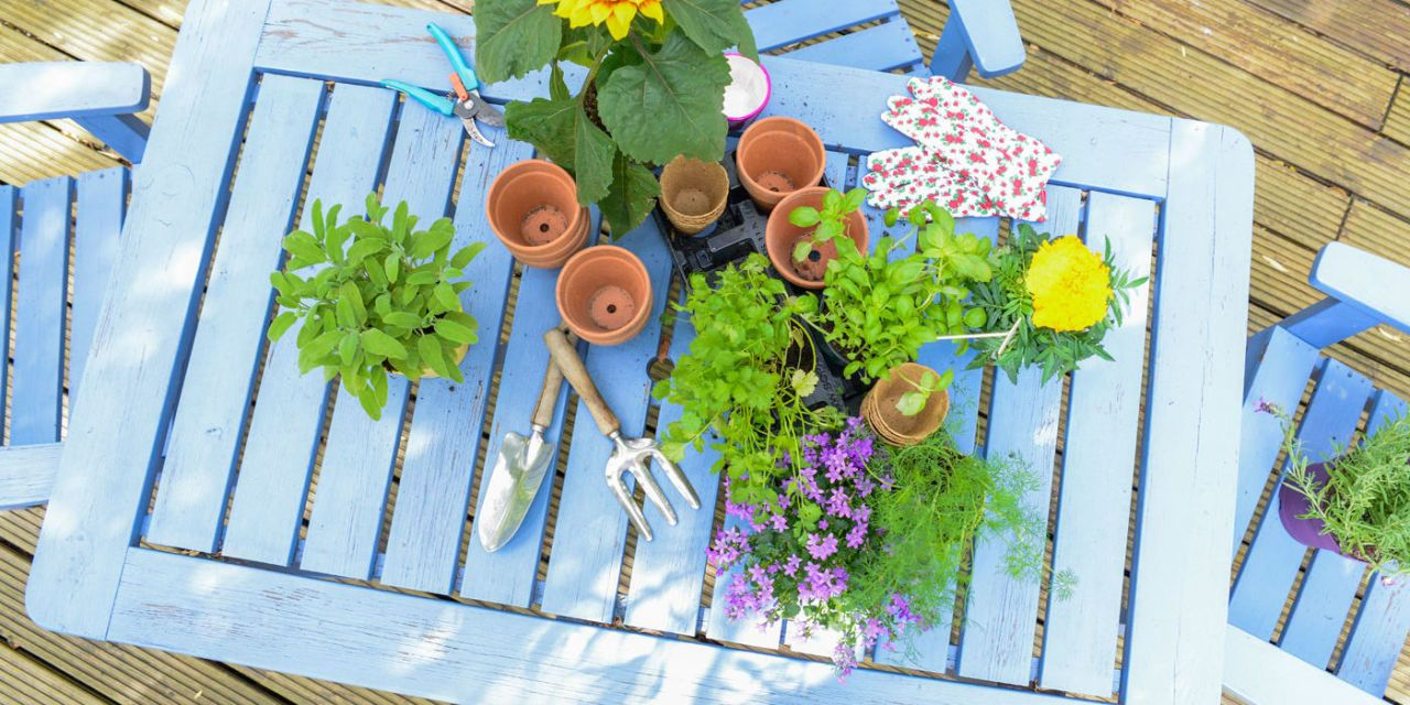 50 Gardening Tips Guaranteed to Improve Your Garden This Spring