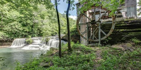 Vegetation, Water resources, Natural landscape, Landscape, Gristmill, Watercourse, Stream, Rural area, Biome, Water feature,