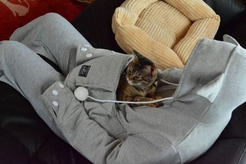 Comfort, Small to medium-sized cats, Carnivore, Felidae, Cat, Whiskers, Wicker, Fur, Basket, Domestic short-haired cat,