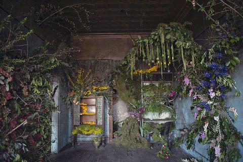 Door, Garden, Yard, Backyard, Floral design,