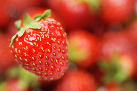Strawberry Facts - Fun Facts About Strawberries