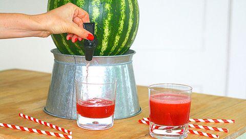 Liquid, Green, Drink, Watermelon, Citrullus, Ingredient, Tableware, Juice, Melon, World,