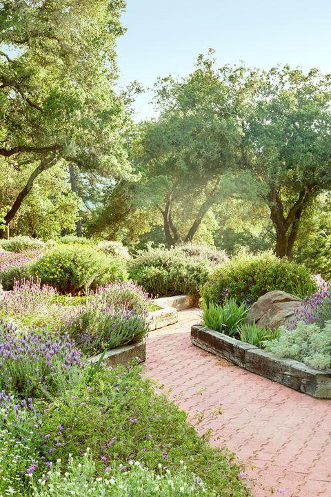 Napa Garden