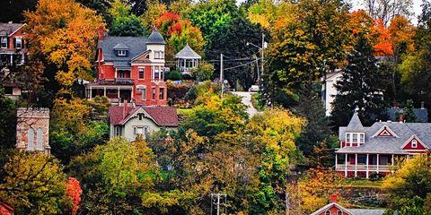 Leaf, Red, Deciduous, Tree, Orange, House, Landmark, Woody plant, Autumn, Colorfulness,