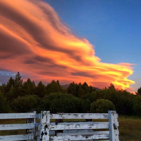 Wood, Sky, Natural landscape, Cloud, Landscape, Sunset, Pasture, Split-rail fence, Sunrise, Dusk,