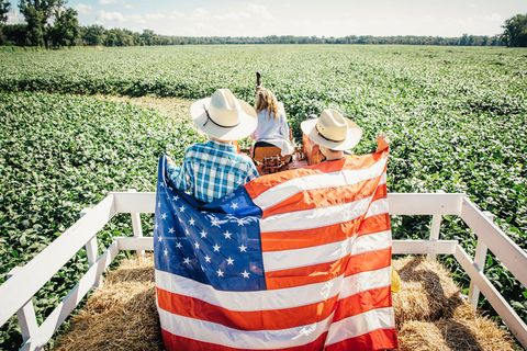 Farm, Agriculture, Field, Hat, Farmworker, People in nature, Rural area, Plantation, Plain, Land lot,