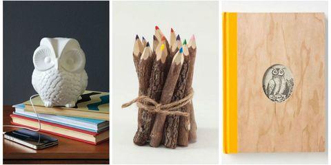 Bird, Bird of prey, Beak, Wing, Pencil, Natural material, Paper product, Collection, Creative arts, Paper,