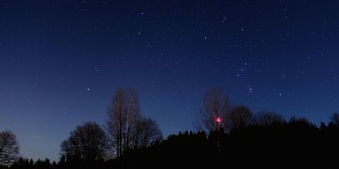 Night, Sky, Branch, Astronomical object, Atmosphere, Star, Darkness, Space, Astronomy, Midnight,