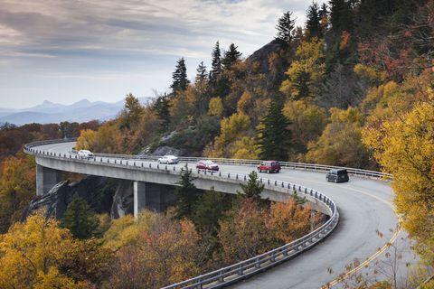 Road, Transport, Infrastructure, Leaf, Tree, Road surface, Bridge, Guard rail, Thoroughfare, Autumn,