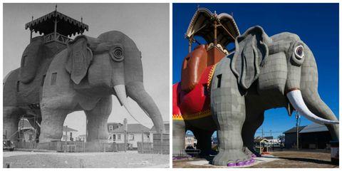 Elephant, Elephants and Mammoths, Indian elephant, Vertebrate, Photograph, Terrestrial animal, Sculpture, Adaptation, African elephant, Art,