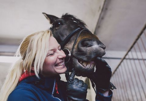 Smiling horse with woman