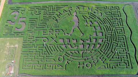 Green, Maze, Labyrinth, Puzzle,