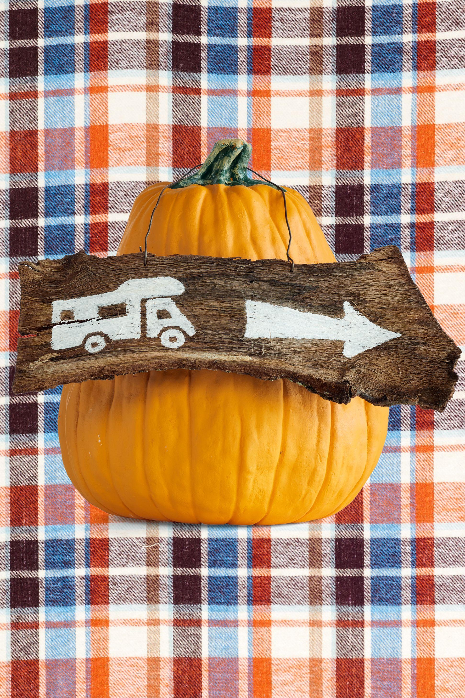 65 Easy Painted Pumpkins Ideas - No Carve Halloween Pumpkin Painting ...