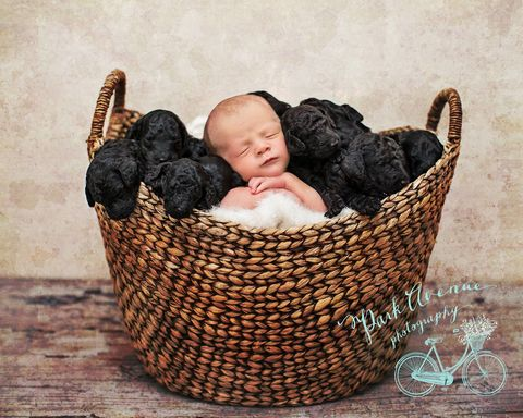 Product, Comfort, Basket, Wicker, Storage basket, Baby & toddler clothing, Home accessories, Baby Products, Baby, Baby sleeping,