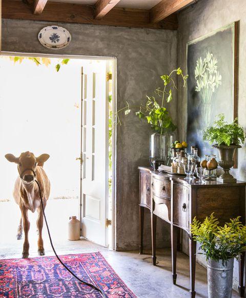 Flowerpot, Room, Interior design, Floor, Door, Wall, Flooring, Interior design, Ceiling, House,