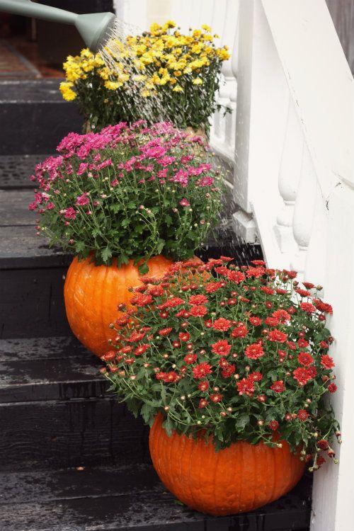 outdoor halloween decorations pumpkin planters