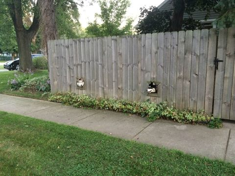 Grass, Plant, Home fencing, Land lot, Groundcover, Garden, Shrub, Lawn, Fence, Backyard,