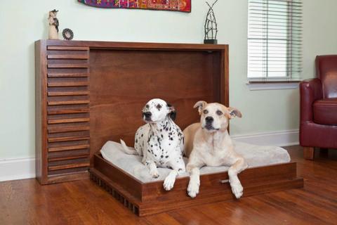 Wood, Dog breed, Floor, Room, Dog, Flooring, Hardwood, Interior design, Vertebrate, Carnivore,