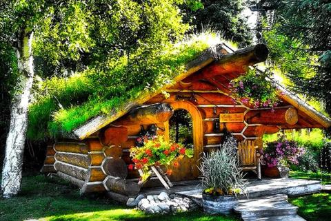 Plant, Landscape, House, Natural landscape, Garden, Woody plant, Rural area, Home, Art, Roof,