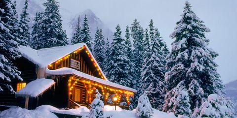 Winter, Freezing, Snow, Tree, House, Home, Woody plant, Evergreen, Larch, Cottage,